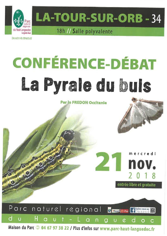 Information sur la Pyrale du buis 21 novembre 2018